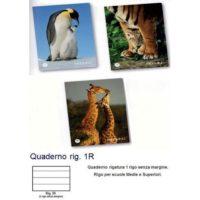 MAXI QUADERNO 100 TENDERNESS 1R P.40.049 21X29