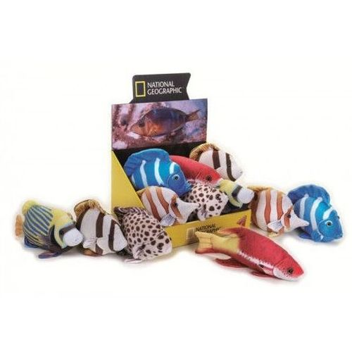 PESCI TROPICALI 21/26CM                  LELLY NATIONAL GEOGRAPHIC
